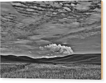 Wheat Fields In The Palouse Wood Print by David Patterson