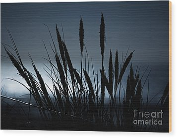 Wheat Stalks On A Dune At Moonlight Wood Print