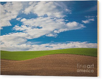 Wheat Wave Wood Print by Inge Johnsson