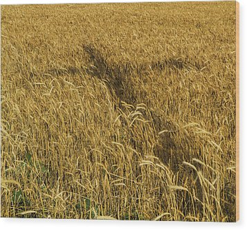 Wheat With Cross  Wood Print by Rob Graham