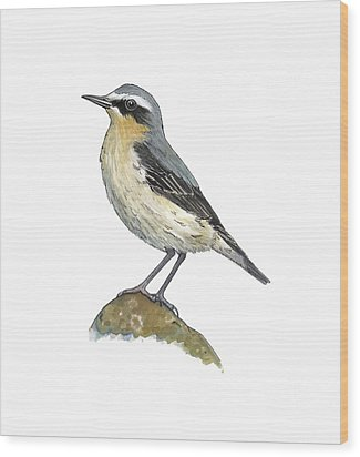 Wheatear, Artwork Wood Print by Science Photo Library