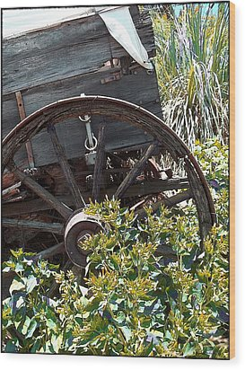 Wheels In The Garden Wood Print by Glenn McCarthy Art and Photography