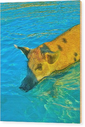 When Pigs Swim Wood Print by Kim Pippinger