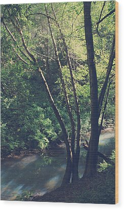 Where It's Shady Wood Print by Laurie Search