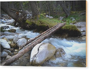 Where The Water Flows Wood Print by Dwayne Schnell