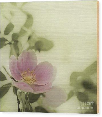 Where The Wild Roses Grow Wood Print by Priska Wettstein