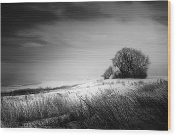 Where The Wild Winds Blow Wood Print