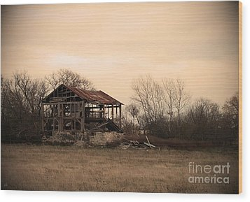 Wood Print featuring the photograph Where We Used To Play by Debi Dmytryshyn