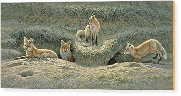 Where's Mom-fox Pups Wood Print by Paul Krapf
