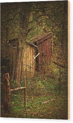 Which Way To The Outhouse? Wood Print by Priscilla Burgers