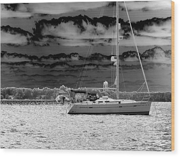 Whilst We Were Sailing Wood Print by Rick Todaro