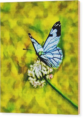 Wood Print featuring the painting Whimsical Butterfly On A Flower by Tracie Kaska