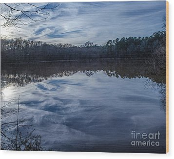 Whipped Cream Reflection Wood Print by Donna Brown