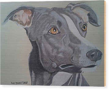 Whippet - Grey And White Wood Print by Anita Putman