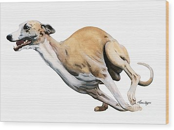 Whippet In The Wind Wood Print by Liane Weyers