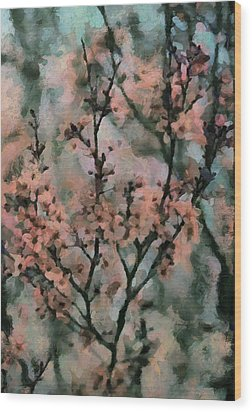 Whispering Cherry Blossoms Wood Print by Janice MacLellan