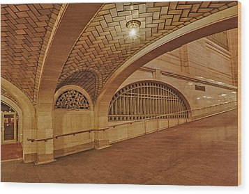 Whispering Gallery Wood Print by Susan Candelario