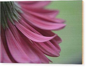 Whispering Petals Wood Print by Melanie Moraga