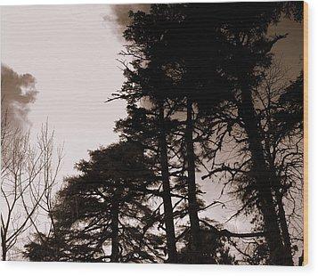 Whispering Trees Wood Print by Salman Ravish