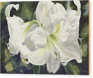 White Amarylilis Wood Print by Alfred Ng