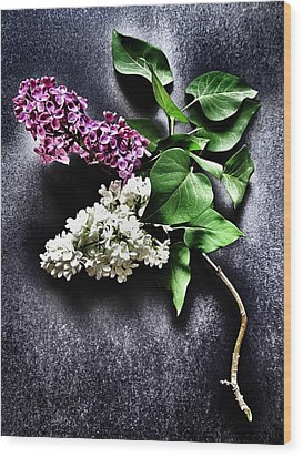 White And Purple Lilacs Wood Print by Marianna Mills