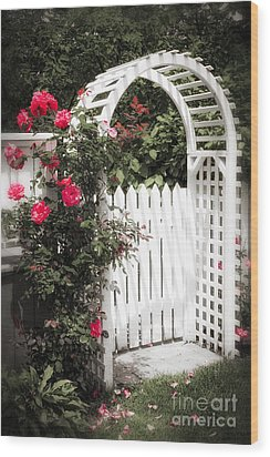 White Arbor With Red Roses Wood Print by Elena Elisseeva