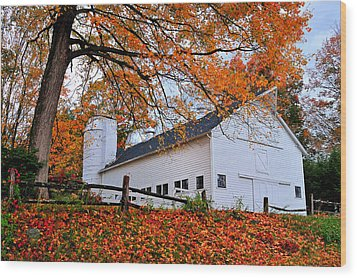 White Barn And Silo Wood Print by Thomas Schoeller