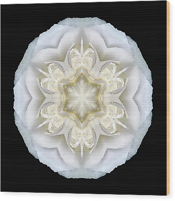 White Begonia II Flower Mandala Wood Print by David J Bookbinder