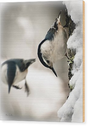 White Breasted Nuthatch In The Snow Wood Print by Bob Orsillo