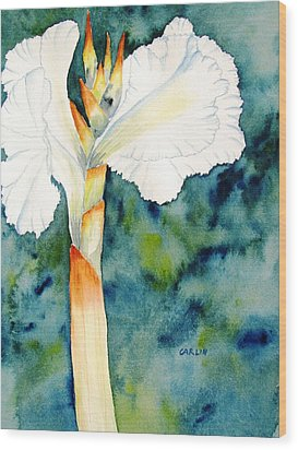 White Canna Flower Wood Print by Carlin Blahnik