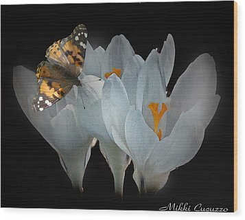 White Crocus With Monarch Butterfly Wood Print by Mikki Cucuzzo