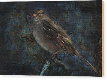 Wood Print featuring the photograph White-crowned Sparrow by Barbara Manis