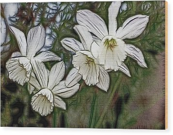 White Daffodil Flowers Wood Print by Photographic Art by Russel Ray Photos