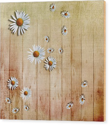 White Daisies Wood Print by David Ridley