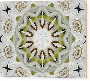 Wood Print featuring the photograph White Daisies Kaleidoscope by Rose Santuci-Sofranko