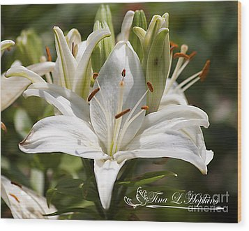 White Day Lily 20120615_36a Wood Print