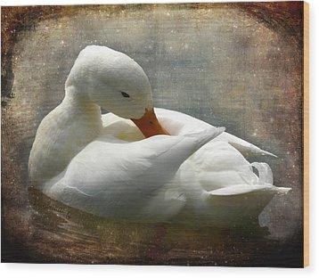 White Duck Wood Print by Barbara Orenya