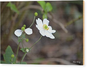Wood Print featuring the photograph White Flower by Alex King