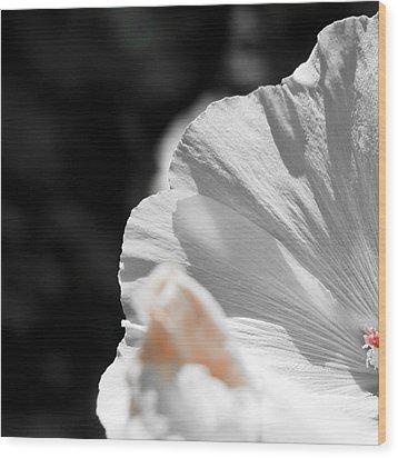White Flower Detail Wood Print by Vlad Baciu