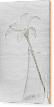 Wood Print featuring the photograph White Flower In A Vase by Zoe Ferrie
