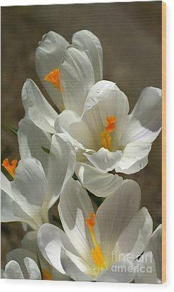 White Flowers Wood Print by Nur Roy