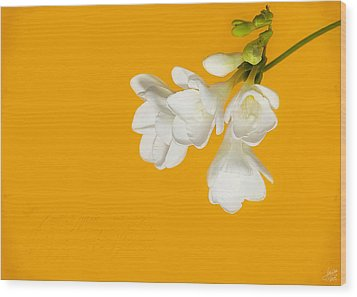 Wood Print featuring the photograph White Flowers On Tangerine Study by Lisa Knechtel