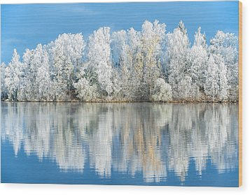 White Frost Wood Print