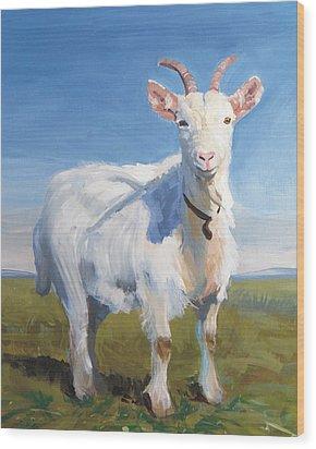 White Goat Wood Print