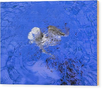White Hair Blue Water 1 Wood Print by Dietrich ralph  Katz