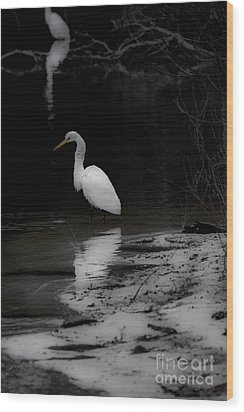 Wood Print featuring the photograph White Heron by Angela DeFrias