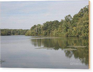 White Heron Lake Poconos Pa II Wood Print by John Telfer