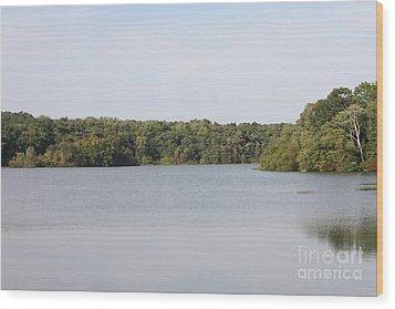 White Heron Lake Poconos Pa IIi Wood Print by John Telfer