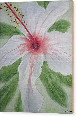 White Hibiscus Flower Wood Print