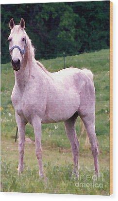 White Horse Wood Print by Susan Crossman Buscho